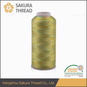 120d/2 Multicolour Rayon Viscose Embroidery Thread 4000 Yard pictures & photos