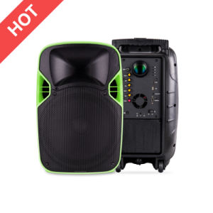 Supplier Plastic Active PA Speaker with Projector and Projection Screen