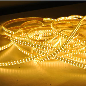 2400k/2700k/3000k High Lumen Output LED Strip Light Rope 144LED/M 120LED/M pictures & photos