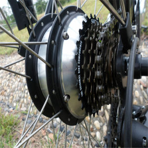 36V 10ah High Performance Electric Road E Bicycle (RSEB-203) pictures & photos