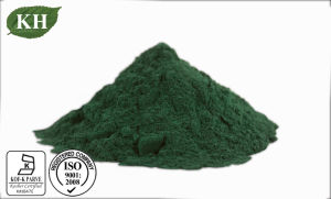 Natural 100% Spirulina Powder Protein 60% Food Grade/Feed Grade pictures & photos