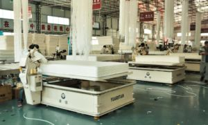 OEM Fortywinks Mattress Manufacturer in China pictures & photos