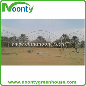 Economical Agricultural Multi-Spans Film Green House (NOONTY) pictures & photos