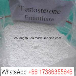 Bodybuilding Anabolic Steroid Powder Testosterone Enanthate Test E pictures & photos