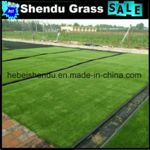 Wholesale China 10mm Artificial Turf Carpet pictures & photos