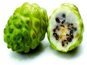 Noni Fruit Juice Powder for Beverage and Food Flavor pictures & photos
