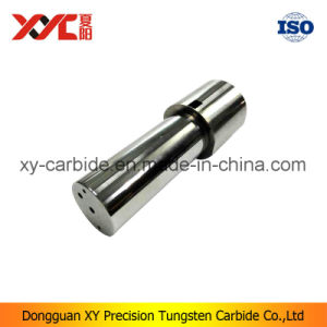 High Precision Hard Metal Punch pictures & photos