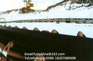 Fuda High Cold Resistant Subzero Conveyor Belt pictures & photos
