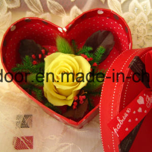 Preserved Natural Roses Handmade Flower pictures & photos