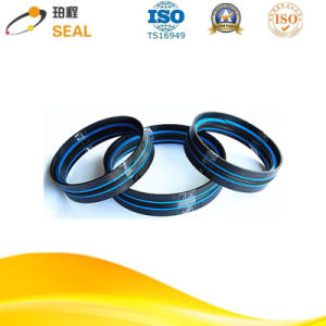 Compact Piston Seals Agricultural Machinery Das Type pictures & photos