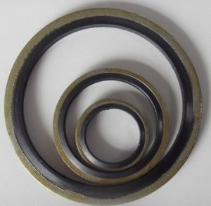 Metal NBR Bonded Piston Washer pictures & photos