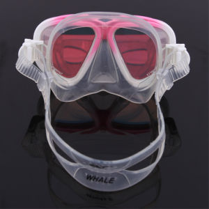 Customized Underwater Waterproof Dive Gear Equipment pictures & photos