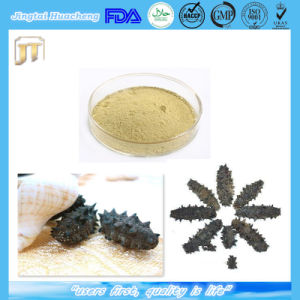 100% Natural Oyster Extract & Sea Cucumber Powder pictures & photos