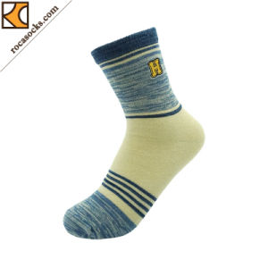 Active Life Sports Socks with Embroidery Logo (162038SK) pictures & photos
