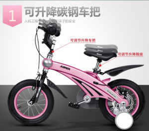 Pink Kids Bike for Girl, Girls Kids Bike with Trumpet, Girls Kid Bicycle with Basket LC-Bike-079 pictures & photos