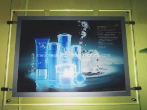 Chain Stores Advertisement LED Slim Light Box (CSH02-A3L-11) pictures & photos