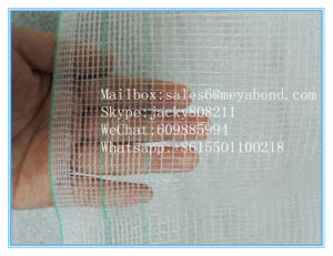 Anti Hail Net for Protect Your Plant, Vegetables, Fruits, etc pictures & photos