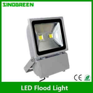 Ce RoHS LED Flood Light (LJ-FL001-100W)