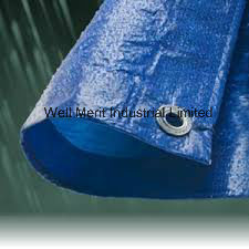 Heavy Duty Waterproof Blue Tarpaulin pictures & photos