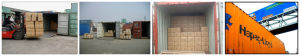 China Top Shipping Company Offer International Logistics pictures & photos