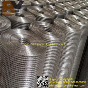 High Quality Stainless Steel Welded Wire Mesh Roll pictures & photos