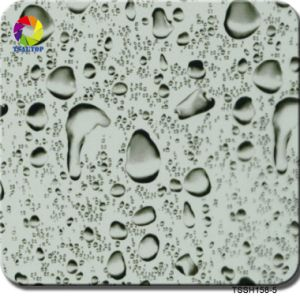 Tsautop 0.5m Tssh158-5 New Design Printable Water Transfer Film pictures & photos