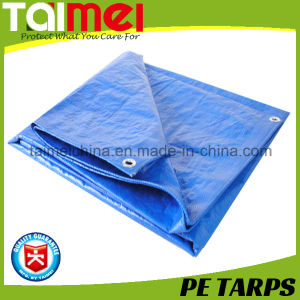 50GSM-300GSM Korea PE Sheet with UV Treated for Car /Truck / Boat Cover pictures & photos