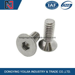 Carbon Steel Hexagon Socket Flat Countersunk Head Cap Screws pictures & photos