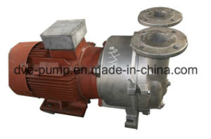 2BV2070 One/Single Stage Liquid Ring Vacuum Pump (price) pictures & photos
