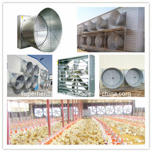 "Exhaust Fan 50""/54"" for Poultry Farm Equipment pictures & photos"