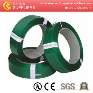 PP/Pet Strapping Band Making Machine pictures & photos