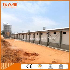 Prefabricated Chicken House with Housing Equipment From Factory pictures & photos