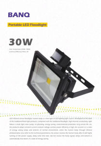 IR+ Floodlight