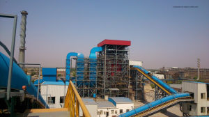 Biomass Power Plant EPC Contractor pictures & photos