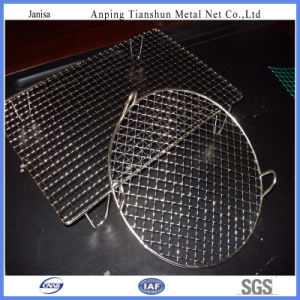 Barbecue Wire Mesh (TS-J403) pictures & photos