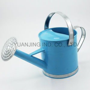 Hotsale Decorative Galvanized Metal Gardening Watering Can with Unfixed Spout