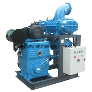 Rotary Piston Pump as Roots Vacuum System Backing Pump H-150 pictures & photos