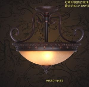 Dia Ceiling Lamp Light Pendant