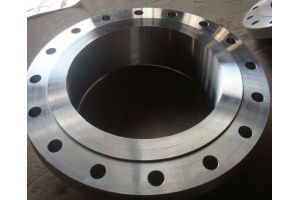 Forging Flanges, P245gh P250gh DIN Steel Flanges pictures & photos