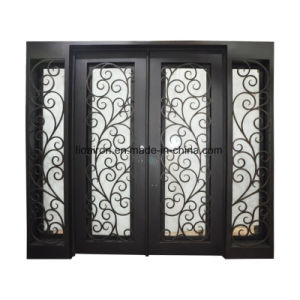 Custom Iron Doors Front Exterior with Sidelights pictures & photos