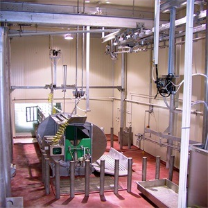 Full Design Cattle Slaughterhouse Equipment pictures & photos