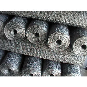 Poultry Wire Mesh/Hexagonal Wire Netting in China pictures & photos