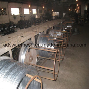 Electro and Hot Galvanized Wire/Electro Soft Binding Wire (ISO9001) pictures & photos