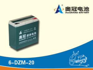 12V30ah Maintenance Free Battery for E-Bike, Motorcycle, Scooter, Golf Cart