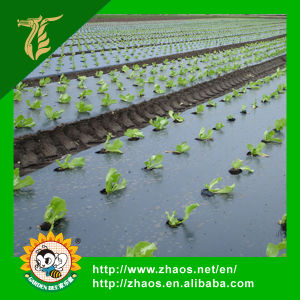 PE Pre- Stretch Black Mulch Film for Agriculture and Gardening Use pictures & photos