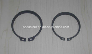 Retaining Ring (DIN471/D1400) pictures & photos