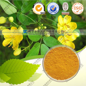 High Quality 100% Natural Rheum Palmatum Extract--Chrysophanol pictures & photos