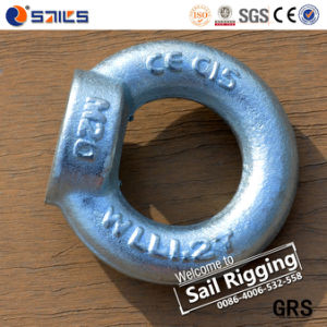 Steel Forged Galvanized DIN582 Lifting Eye Nut pictures & photos