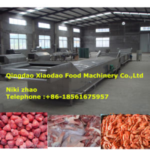 Thawing Machine for Frozen Meat, Sea Food, Fruit pictures & photos