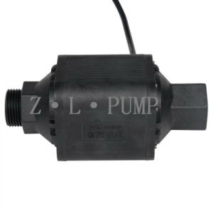 Zl60-01 BLDC Water Supply Pump
